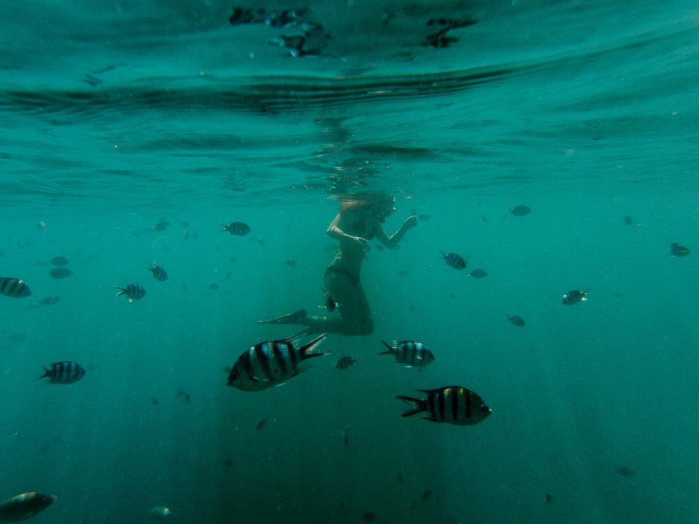 Fiji2016(lowres)-100.jpg