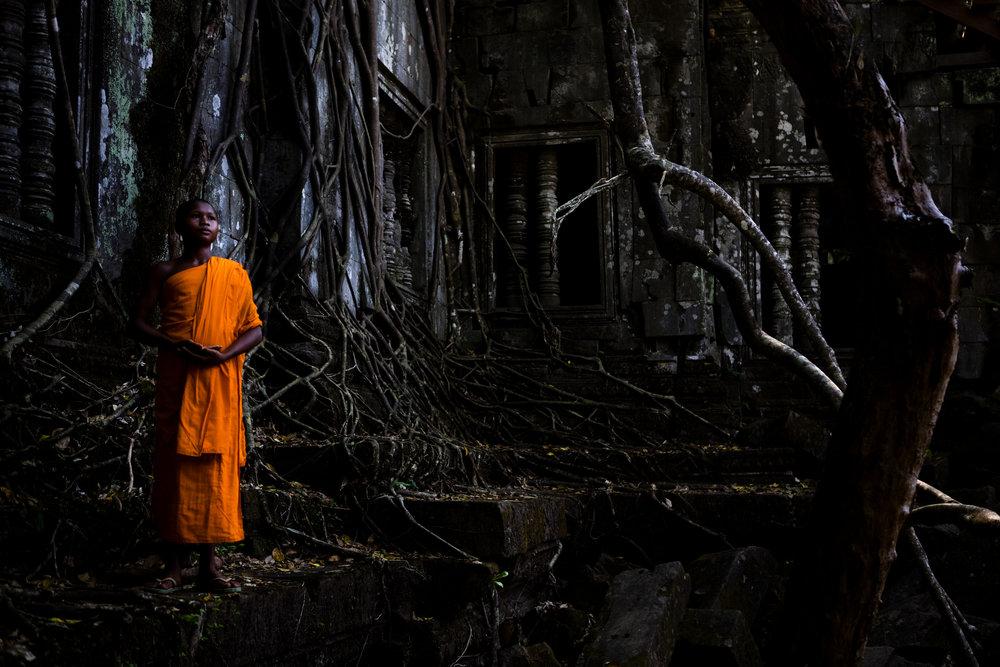Harvest Cambodia -