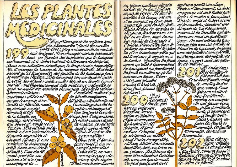 plantes-medicinales-recettes