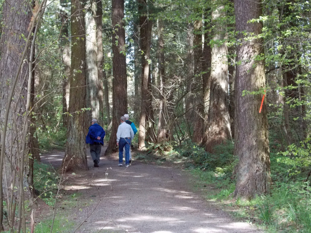 Metro and its regional support has allowed smaller cities to preserve open spaces and create recreational opportunities for residents, such as this walking trail in Nadaka Nature Park and Garden in Gresham. Photo courtesy of Lee Dayfield.