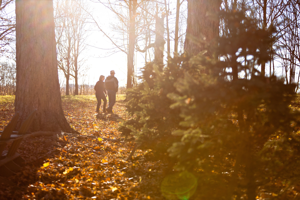Kathie and Dan Brown walk through some of their 200-year-old sugar maple trees