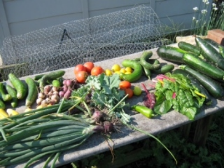 Last August's celebration boasted a wide variety of farm-fresh produce