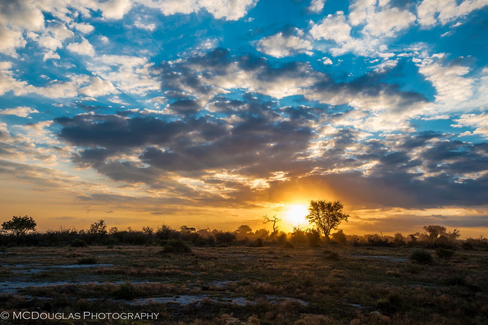 Savannah Sunset, Madikwe, South Africa