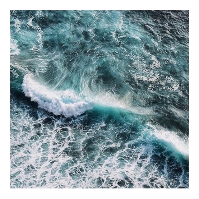 The most prized Ambergris, or 'floating gold', spends years at sea, aging to perfection under hot sun and briny waves... #slowperfume #naturalperfume #botanicalperfume #organicperfume #indieperfume #nicheperfume #ambergris #floatinggold #natureknowsbest #thornandbloom