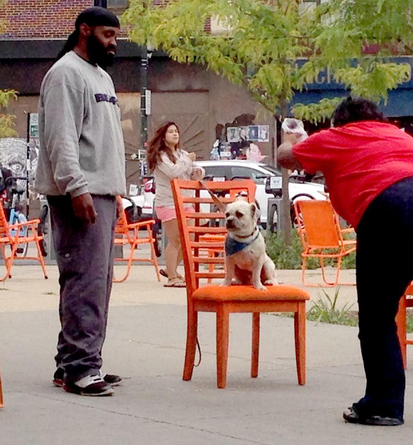 00 dog photo.jpg