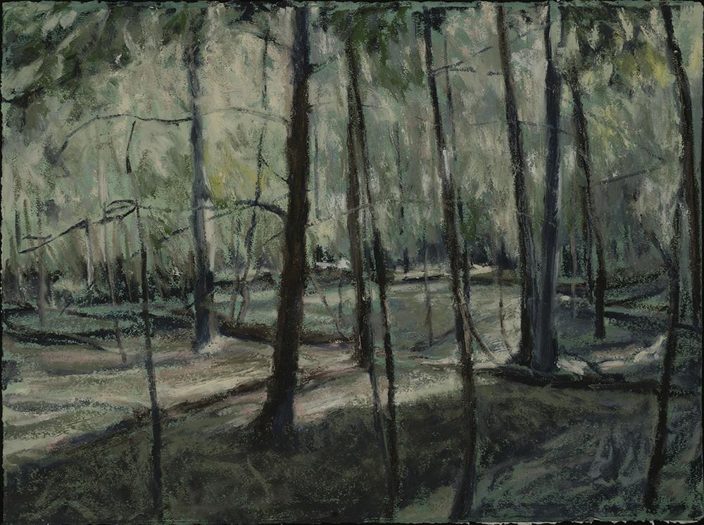 In Woods 4   2015