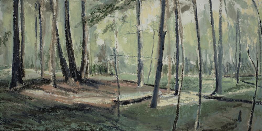 In Woods 6   2016