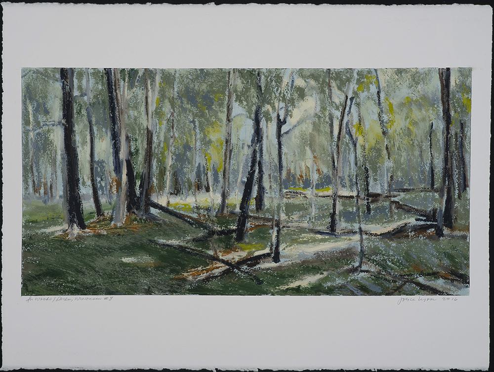 In Woods 8   2016