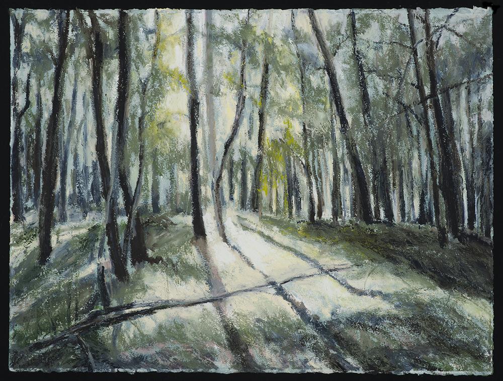 In Woods 7   2016