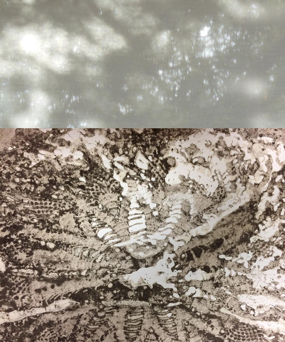 Dirt and Bones