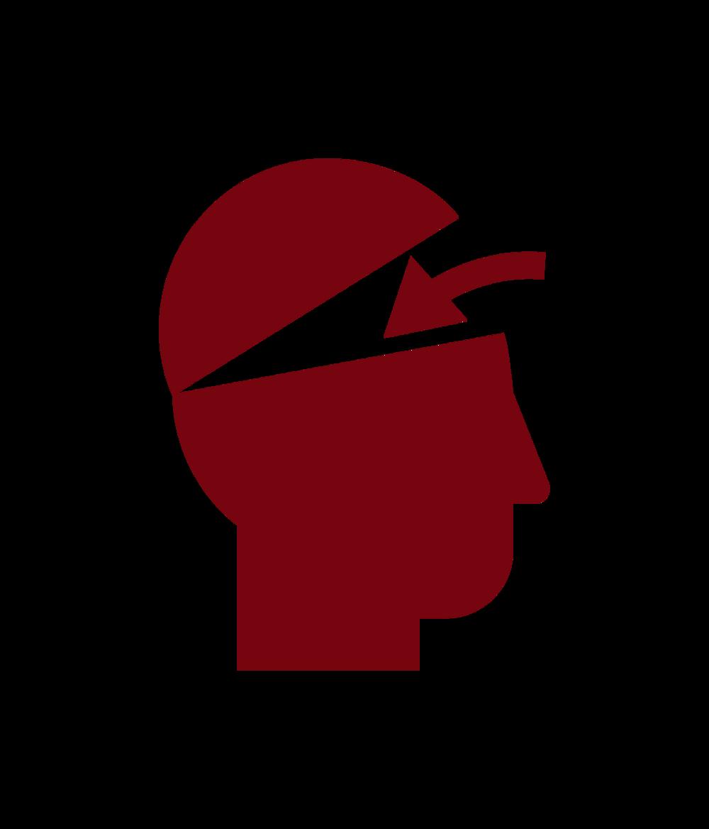 head logo.png