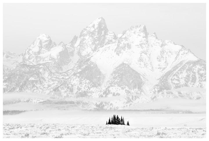 """Tetons and Trees"" Grand Teton National Park 13""x19"" Photograph $325"