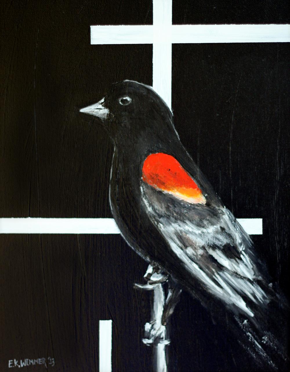 """Red-Winged Blackbird"" 11""x14"" Acrylic On Canvas $350"