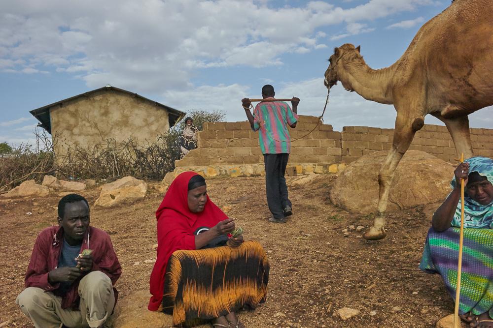 Babile, Ethiopia, 2014