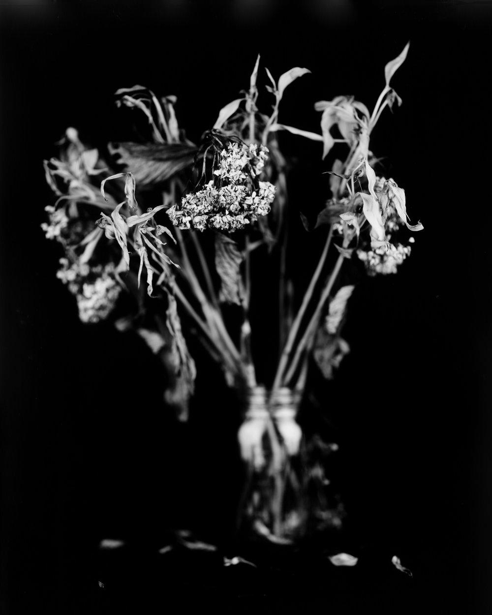 FlowersB&W.jpg