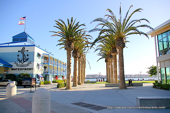 Oakland-Landmarks-Jack-London-Square-Waterfront-Hotel-Palm-Trees-1-590x394.jpg