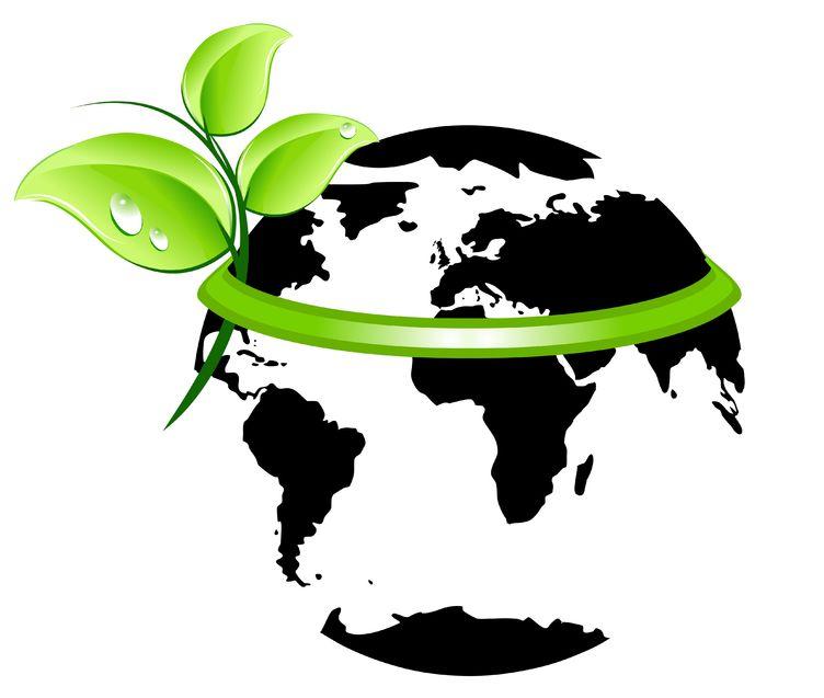 Diseño-Eco-Sostenible.jpg