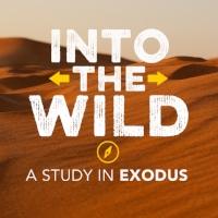 Exodus Series (2).jpeg