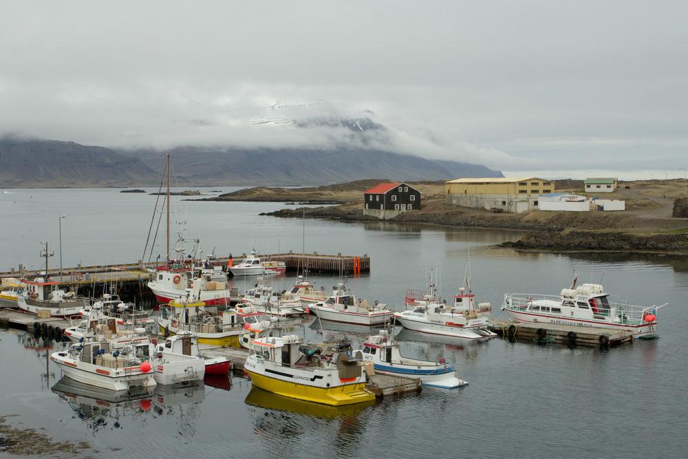 Iceland (26 of 40).jpg