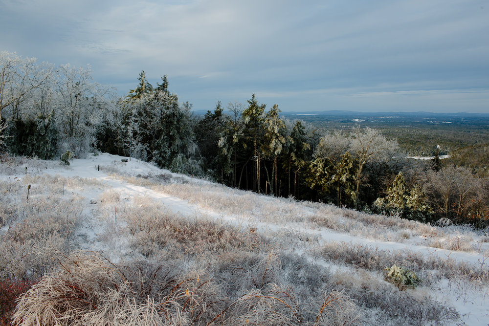 MountAChristmas2017IceStorm_ELordPhoto-7.jpg