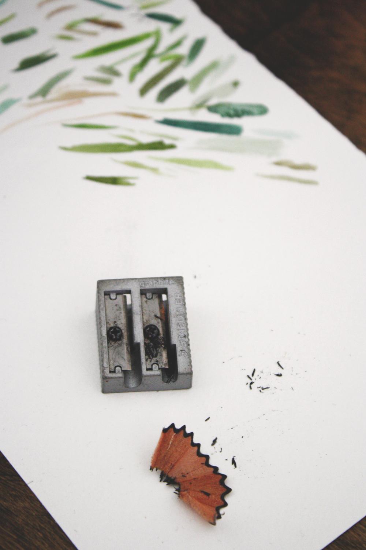 pencil-shavings.jpg