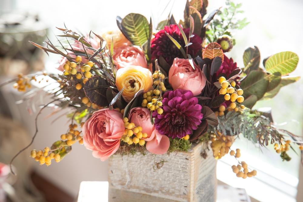 Blooms&Co--6856.jpg