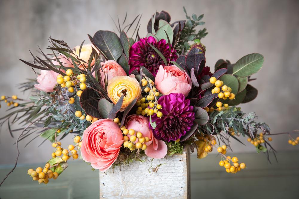 Blooms&Co--6251.jpg