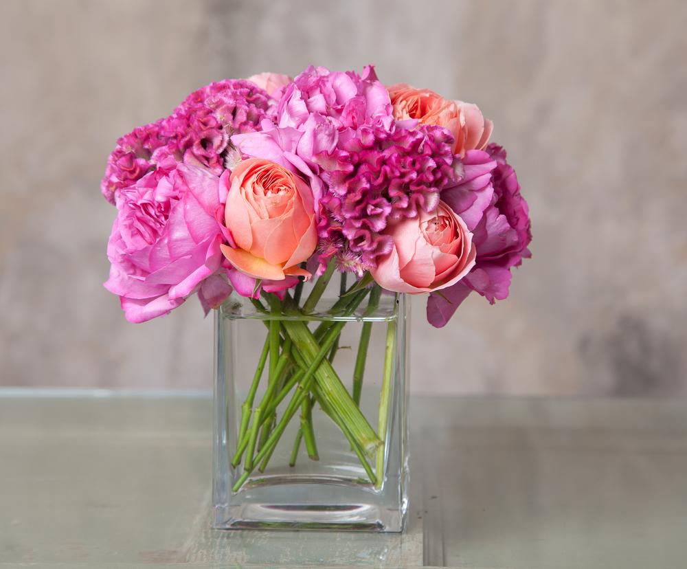 Blooms&Co--6315.jpg