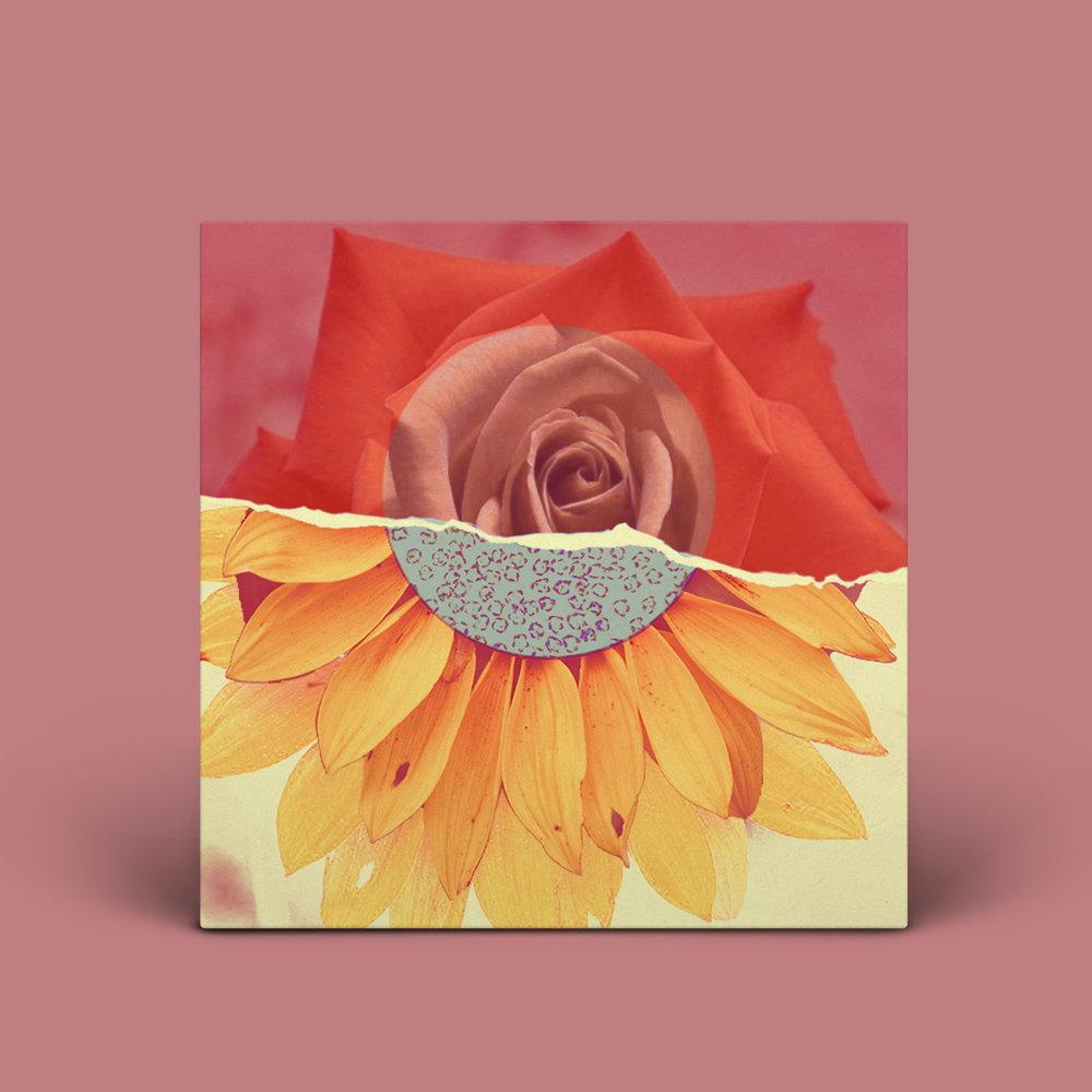 Vinyl-Record-PSD-MockUp-rose.jpg