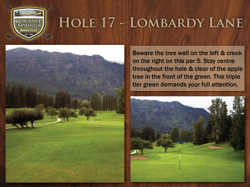 Hole-17---Lombardy-Lane.jpg