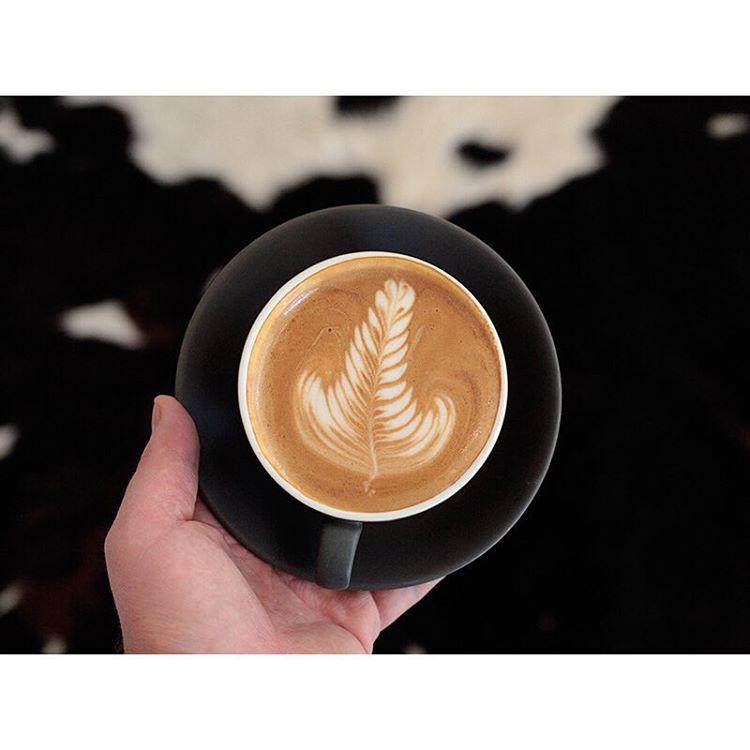 Start your week with a smooth Sunny Boy Original.     Open 6am - 5pm. Lomandra Drive, Currimundi  (at Sunshine Sunshine Espresso)