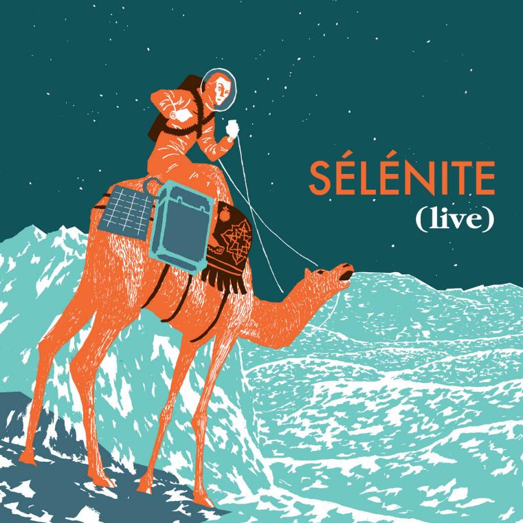 Selenite-dataglitch-thecheatcode