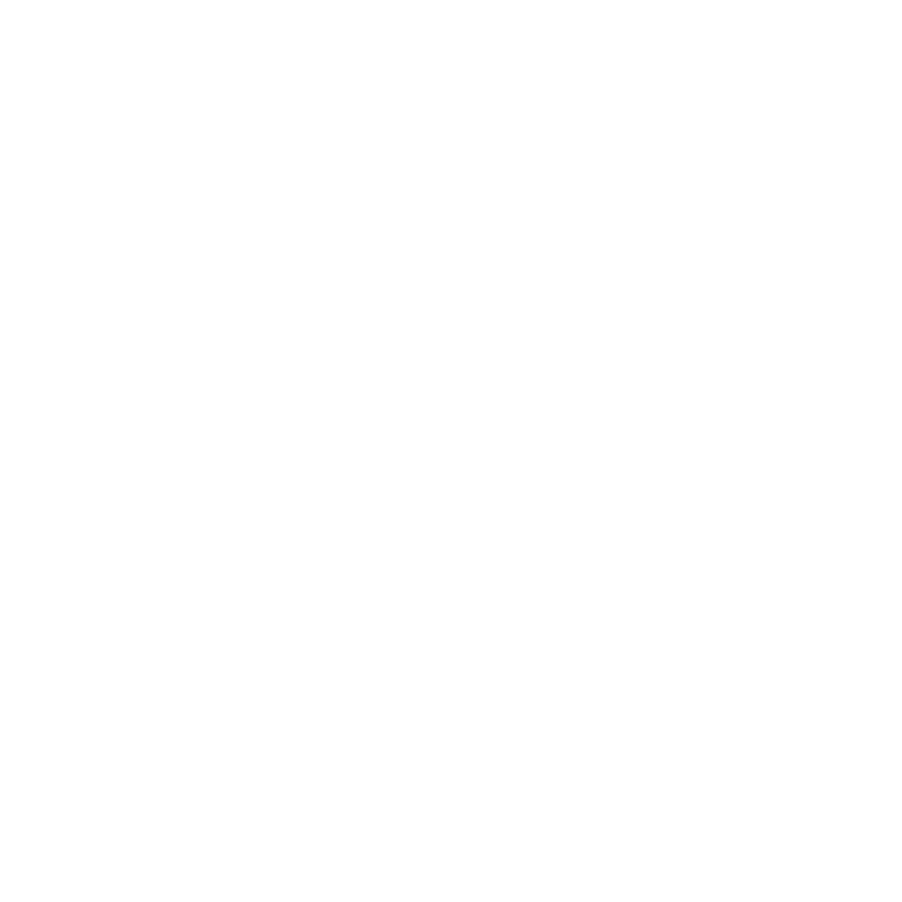 Blue Pelican Coffee Logo
