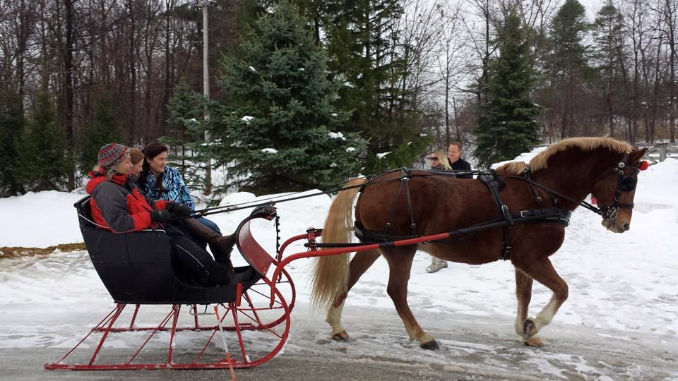Visit the barn for a festive sleigh ride* through the beautiful hills at Tannerwood Farm. - *Sleigh Rides will run from Noon until 2:00 p.m.