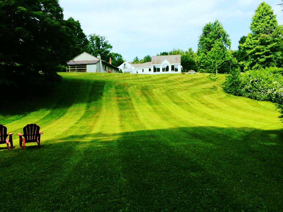 Freshly mowed lawn in Leverett