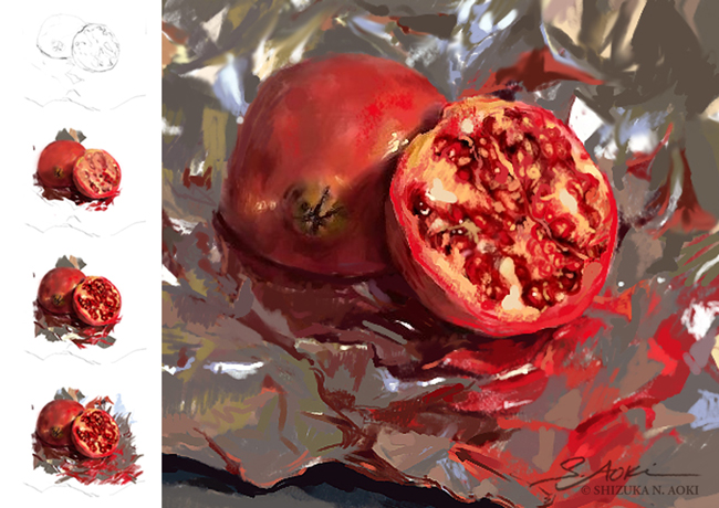 Pomegranate on Foil - Still Life Study Digital Painting © Aoki | Anatomize Medical Media Inc.