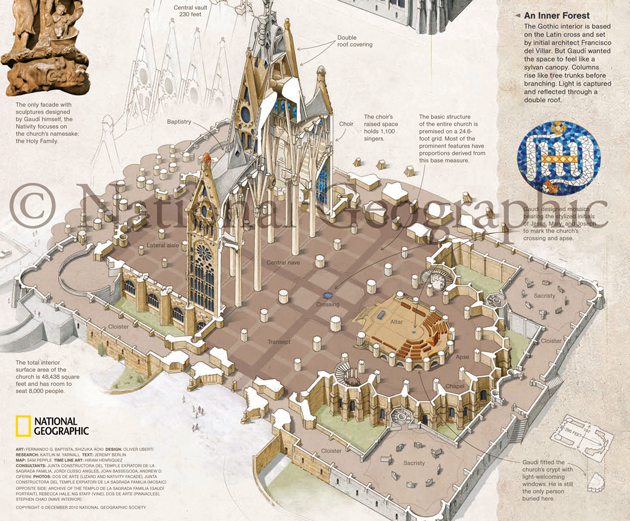 Barcelona's Natural Wonder  - National Geographic Magazine (centerfold) - Detail Collaboration with Lead Scientific Illustrator, Fernando Baptista Illustration describes Antoni Gaudi's detailed, biomimetic architecture Medium: Graphite, traditional water media, and digital © Aoki Science Art | Anatomize.ca