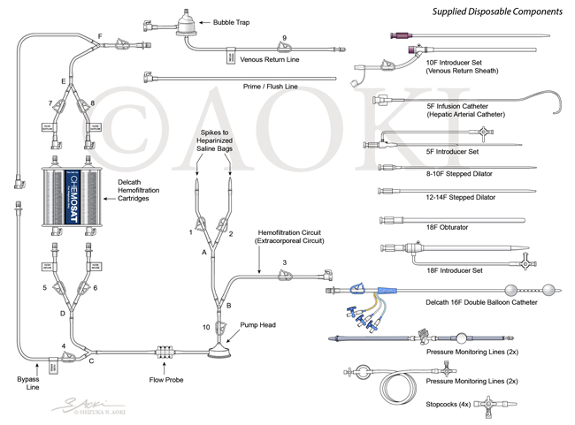 Index of Instruments in User Manual for CHEMO-SAT Chemotherapy System Medium: Digital © Aoki | Anatomize Medical Media Inc.