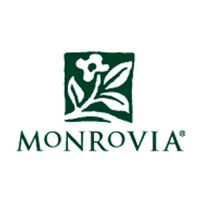 Monrovia.jpg
