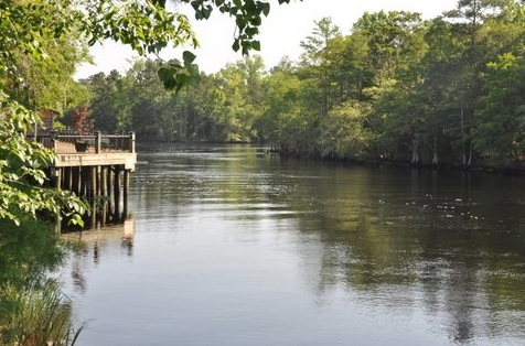The rolling Waccamaw