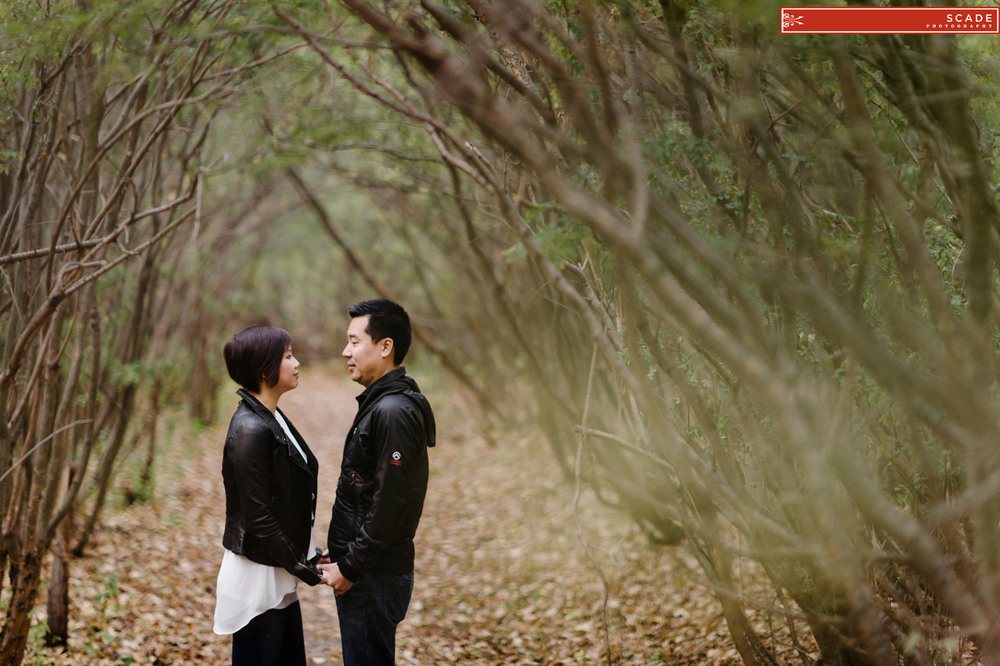 River Valley Couples Session - Dorothy and Dan - 0001.JPG