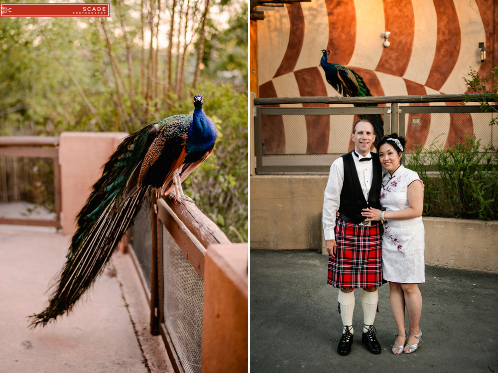 Calgary Zoo Wedding - Janet and Jon