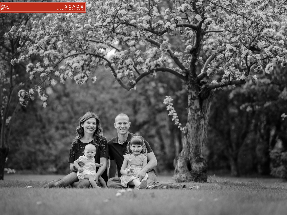 Edmonton Blossoms Family Photography 03.JPG