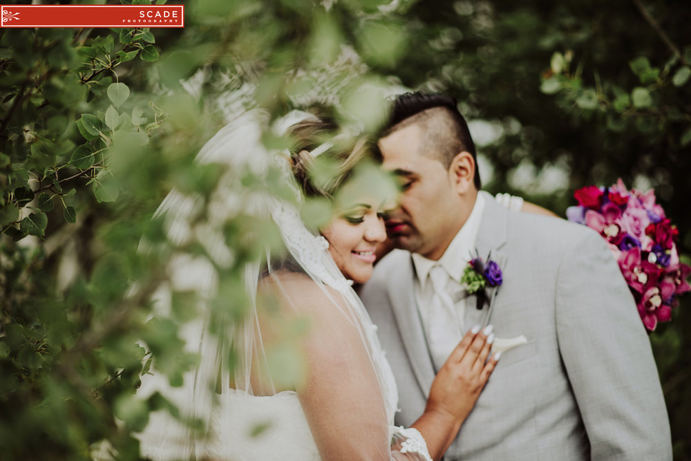 Edmonton Salvadorian Wedding