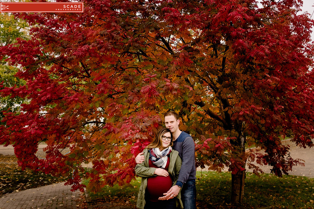 Fall maternity photography edmonton