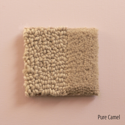 Pure Camel.jpg