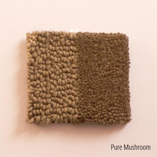Pure Mushroom.jpg