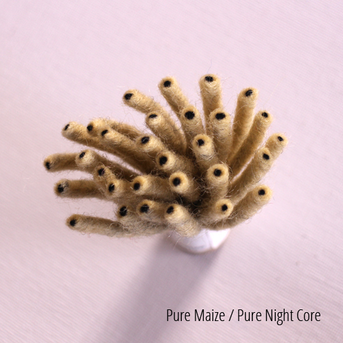 Pure Maize, Pure Night core.JPG