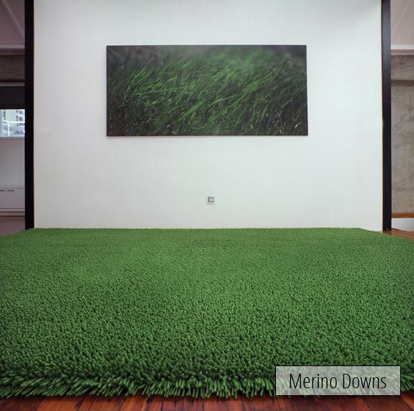 Merino Downs.jpg