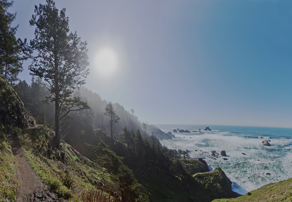 View of Pacific Ocean from cliff side, Indian Head Beach area/Cannon Beach area, Oregon
